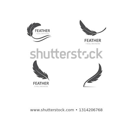Veer logo vector papier school werk Stockfoto © Ggs