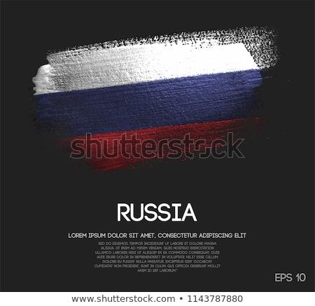 Russia emblema metal segno rete blu Foto d'archivio © Oakozhan