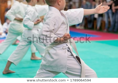 kids doing martial arts stock photo © bluering