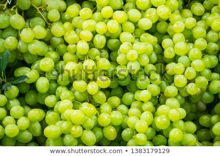friss · zöld · szőlő · érett · farm · természet · gyümölcs - stock fotó © azamshah72