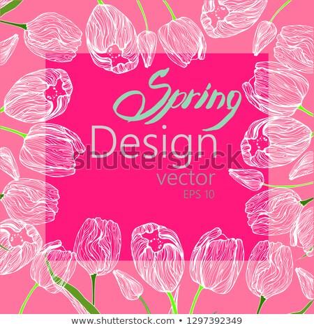 Pastel primavera tulipanes frontera eps 10 Foto stock © beholdereye