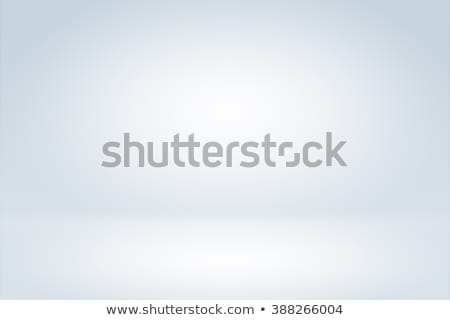 Clear empty photographer studio background Stock photo © cherezoff