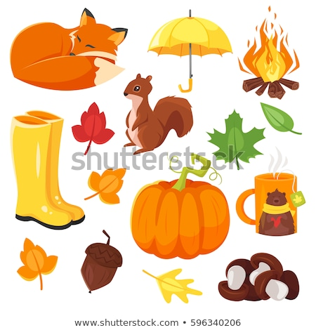 vector cartoon style set of autumn symbols fox pumpkin yellow stock photo © curiosity