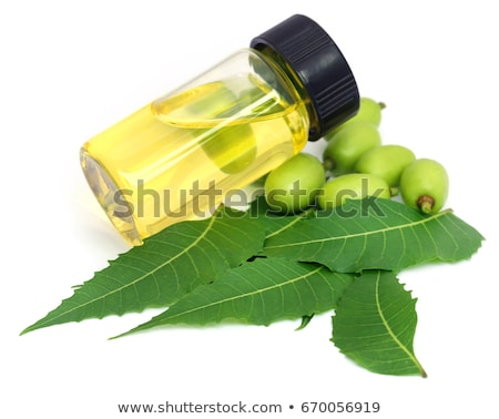 Tangerines with leaves and bottle of essential citrus oil on a white background Stock photo © yelenayemchuk