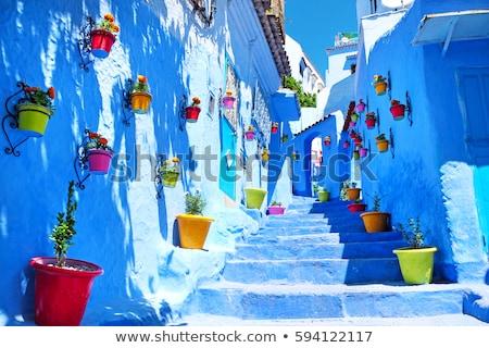 chefchaouen blue city morocco stock photo © dinozzaver