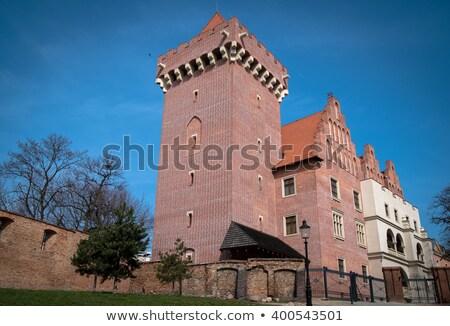 Royal castle of Poznan Stock photo © neirfy