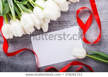 Sazonal conselho fita primavera ilustração decorado Foto stock © lenm