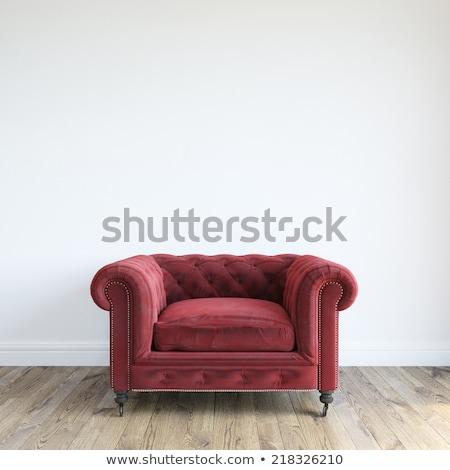 Antieke interieur Rood fauteuil klassiek scène Stockfoto © ElaK