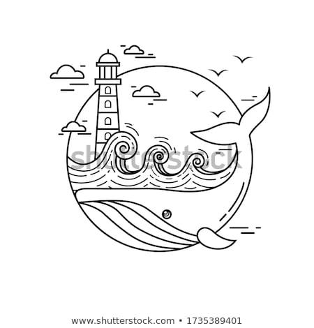 Animal baleia ilustração fundo exercer Foto stock © colematt