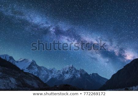 natureza · cena · lua · estrelas · ilustração · floresta - foto stock © colematt