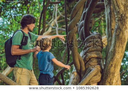 father and son watching tropical lianas in wet tropical forests Stock photo © galitskaya