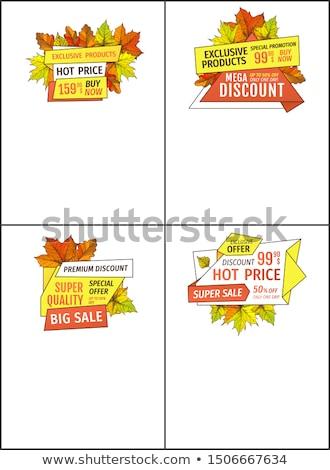 otono · etiqueta · establecer · caída · estacional · placa - foto stock © robuart