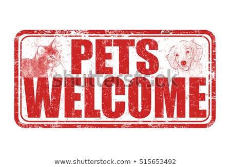 Cute huisdieren kliniek welkom teken illustratie Stockfoto © colematt