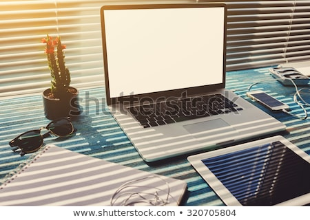 Stock photo: Loft home office workplace with books and cactus