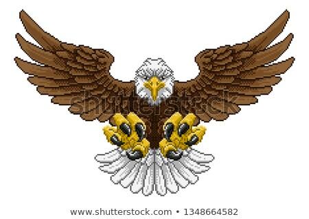 Eagle Pixel Art Arcade Game Cartoon Mascot Stock photo © Krisdog