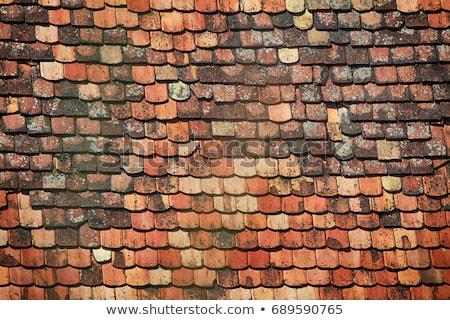 Stok fotoğraf: Detay · eski · çatı · fayans · ev