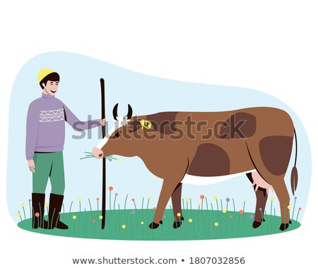 Bovini mucca piedi outdoor farm Foto d'archivio © robuart