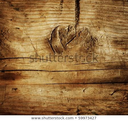 Very Old Wood Background, closeup. wood texture Stock photo © galitskaya