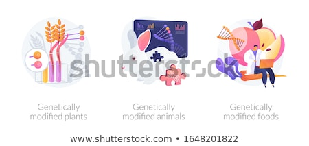 Genetic engineering vector concept metaphors. Stock photo © RAStudio