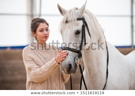 Young brunette woman in white knitted woolen sweater standing by white racehorse Stock photo © pressmaster