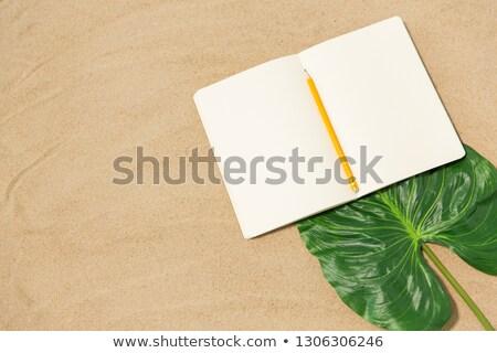Notebook ceruza levél tengerparti homok vakáció utazás Stock fotó © dolgachov