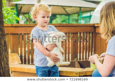 toddler girl caresses and playing with rabbit in the petting zoo concept of sustainability love of stock photo © galitskaya