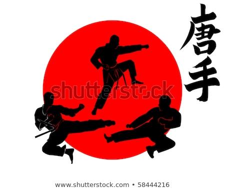 karate · siluet · vektör · görüntü · yalıtılmış · beyaz - stok fotoğraf © mayboro