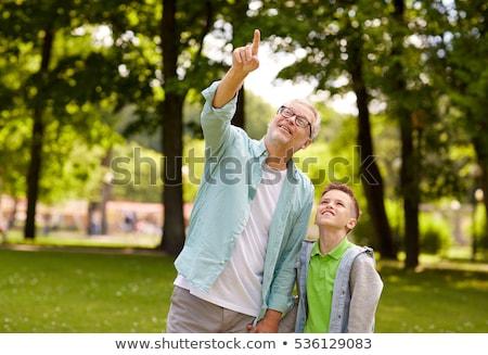 Dziadek chłopca wskazując w górę lata parku Zdjęcia stock © dolgachov
