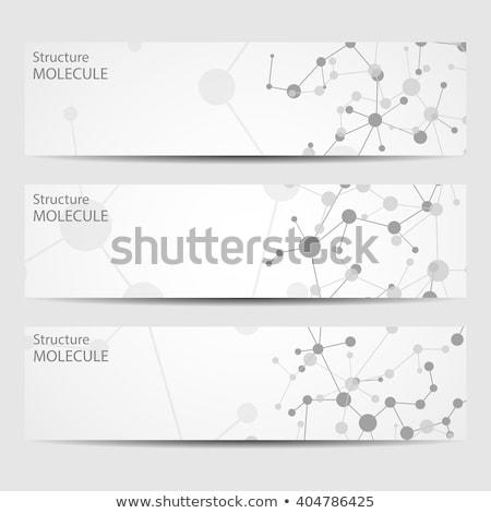 Techno beyin vektör afiş şablon kurumsal Stok fotoğraf © barsrsind