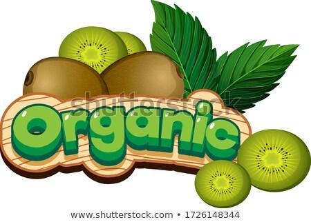 Font design for word organic with fresh kiwi fruit Stock photo © bluering