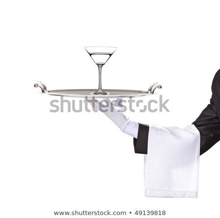 Martini ezüst adag tálca közelkép kép Stock fotó © gregory21