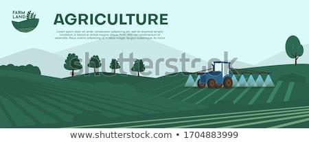 Farming and plantation stock photo © ampyang