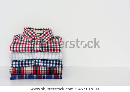 iron on red shirt Stock photo © marylooo