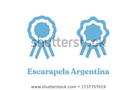 Argentína zászló részletes selyem eps10 háttér Stock fotó © milsiart