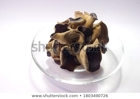 チョコレート 菌 ペストリー 1 孤立した 白 ストックフォト © Antonio-S