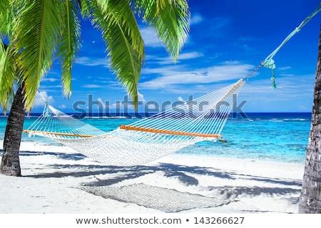 Boş plaj tropikal plaj su deniz yaz Stok fotoğraf © grivet
