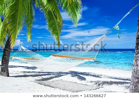 Empty Hammocks on the Beach Stock photo © grivet
