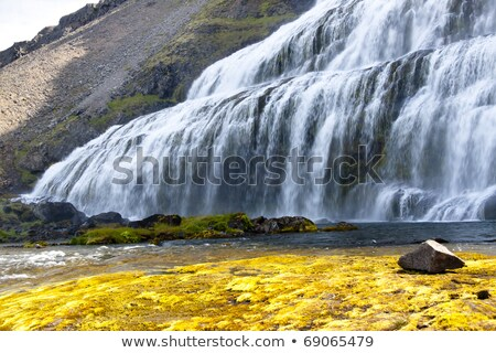 Rapid river and waterfall - Iceland, Westfjords. Stock photo © tomasz_parys