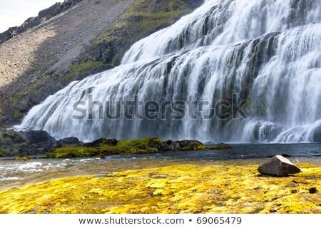 gyors · folyó · vízesés · Izland · fű · tájkép - stock fotó © tomasz_parys