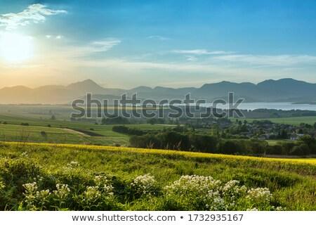 ファーム 肥料 オーガニック 農業 地球 ストックフォト © xedos45