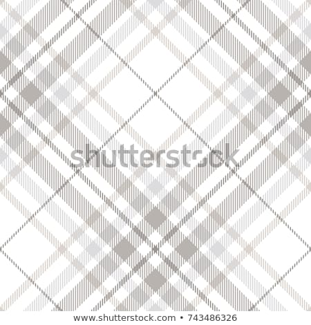Plaid Pattern Stock photo © cteconsulting