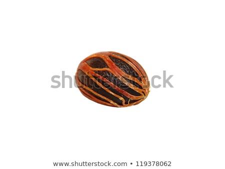 Zdjęcia stock: Jeden · całość · gałka · muszkatołowa · nasion · pokryty · odizolowany