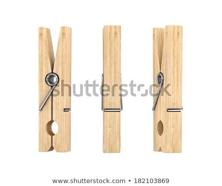 Ruházat természetes fából készült szeg izolált stúdiófelvétel Stock fotó © deyangeorgiev