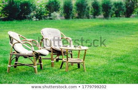 sandalye · park · iki · beyaz · yeşil - stok fotoğraf © Lynx_aqua
