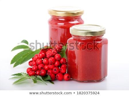 2 果物 赤 黒 山 灰 ストックフォト © FidaOlga