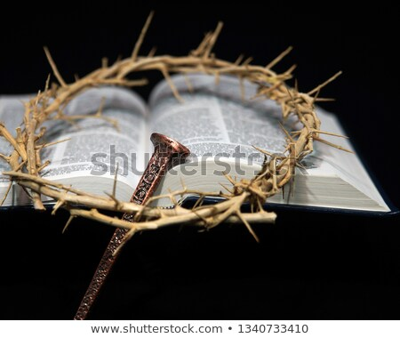 crown of thorns on the Bible Stock photo © mady70