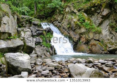 nyár · tájkép · hegyek · természet · tartalék · tavasz - stock fotó © bogumil