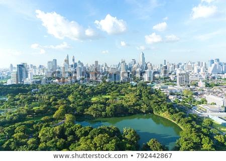 bangkok city view stock photo © elisanth