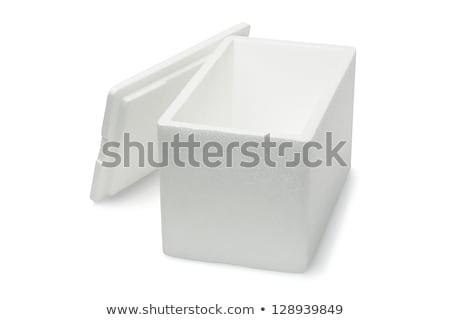 Open Styrofoam storage box  Stock photo © dezign56