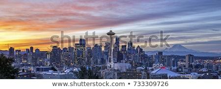 Seattle · sziluett · éjszaka · ikonikus · nyugat - stock fotó © andreykr